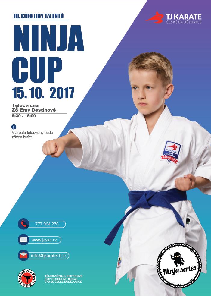 ninja-cup-01